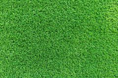Grass texture or grass background. Green grass for golf course, soccer field or sports background concept design. Grass field texture for golf course, soccer Royalty Free Stock Image
