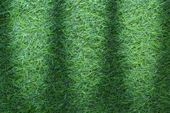 Grass texture or grass background. Green grass for golf course, soccer field or sports background concept design. Artificial green. Grass. Green turf grass Stock Photos