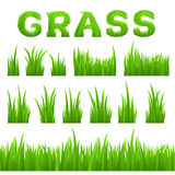 Grass texture design elements set  on white background. Collection of early spring green grass. Royalty Free Stock Photos