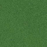 A grass texture Stock Images
