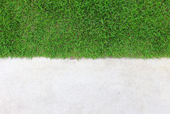 Grass Texture. Green grass texture with concert background Stock Images