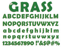 Grass letters Stock Photography