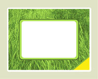 Grass textured frame Stock Images