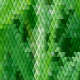Grass themed background with diamond grid Royalty Free Stock Photos