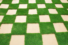 Grass tile Stock Images