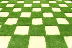 Grass tiles in garden. Royalty Free Stock Photos