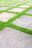 Grass tiles walk way Royalty Free Stock Photography
