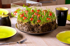 Grass and tomatoes on cake Stock Photography