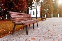 Grass, trees bench walkway Stock Image