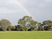 Grass with trees and rainbow in the background. Green lawn area with trees, rainbow in the sky royalty free stock photography