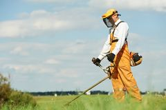 Grass trimmer works. Young worker with power tool string lawn trimmer mower cutting grass near road Stock Photos