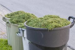 Grass trimmings in garbage cans.  Stock Photography