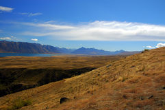 Grass and tussock hill at Lake Tekapo Stock Images