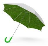 The grass umbrella Stock Image