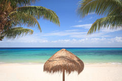 Thatched umbrella between palm trees. A palapa thatched umbrella between palm trees on an idyllic tropical beach in Cozumel, Mexico Stock Images