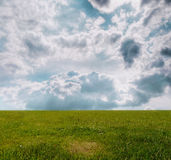 Grass under blue sky. Field of grass and perfect sky Stock Images