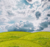 Grass under blue sky. Field of grass and perfect sky Royalty Free Stock Photos
