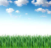 Grass under blue sky Stock Photography