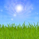Grass under the sky and sun. Vector Royalty Free Stock Photos
