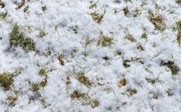 Grass under snow royalty free stock photos