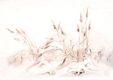 Grass under snow watercolor painting Royalty Free Stock Image