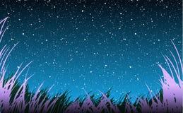 Grass Under Stars vector illustration
