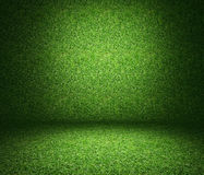 Grass used as background. Royalty Free Stock Photos
