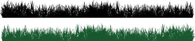 Grass vector Royalty Free Stock Photos