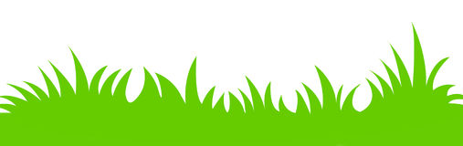 Grass vector. Green grass illustration isolated white background. vector format available Royalty Free Stock Image