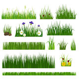 Grass vector illustration. royalty free illustration