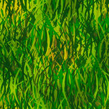 Grass vector pattern. Green grass with patches of sunlight - seamless pattern Stock Image
