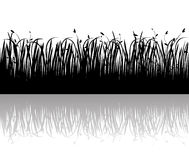 Grass  vector silhouette Royalty Free Stock Photo