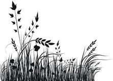 Grass vector silhouette. Vector illustration royalty free illustration