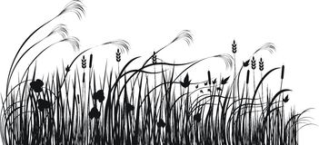 Grass vector silhouette. Vector illustration vector illustration