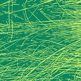 Grass abstract vector texture background. Grass vector texture for creation of banners and abstract organic backgrounds and patterns Stock Photo