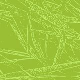Grass abstract vector texture background. Grass vector texture for creation of banners and abstract organic backgrounds and patterns Royalty Free Stock Photo