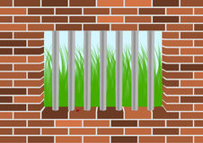 Grass viewed from a jail window. Grass and ladybugviewed from a jail window royalty free illustration