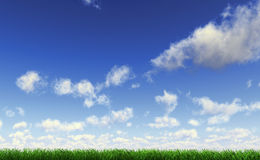 Grass viewed from a side at ground level. Grass viewed from a side at ground level, with blue sky with cumulus clouds Royalty Free Stock Photo