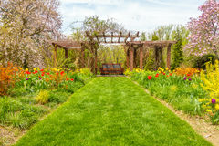 Grass walkway among the flowers. Grass walkway surround by colorful flowers on both sides Stock Photo