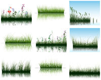 Grass on water. Vector grass silhouettes backgrounds set with reflection in water. All objects are separated Stock Photos