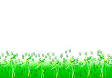 Grass in water Royalty Free Stock Images