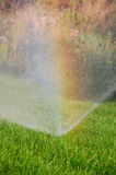 Grass, water and rainbow Stock Photography