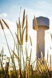 Grass and water tanks Royalty Free Stock Images