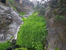Grass waterfall Royalty Free Stock Photos