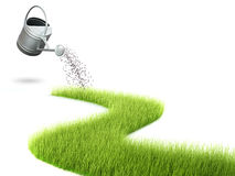 Grass and watering can Royalty Free Stock Photos