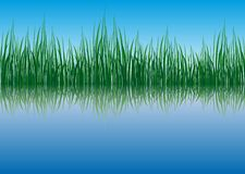 Grass waterside Stock Photos