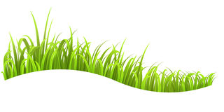 Grass wave Royalty Free Stock Images