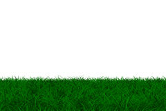 Grass on white background. Isolated 3D image Royalty Free Stock Image