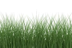 Grass on white background. 3d rendering stock images