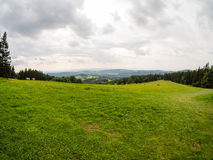 Grass and white cloudy sky, natural panorama. Fresh green grass and white cloudy sky, natural panorama with mountains on horizon and framed by trees, copyspace Stock Photography